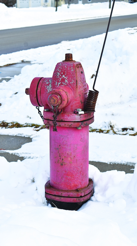 Fire hydrants must be kept clear of snow and ice, like the one seen here, for the safety of all. Homeowners closest to hydrants are traditionally...